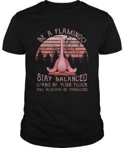 Be a flamingo stay balanced stand by your flock  Unisex