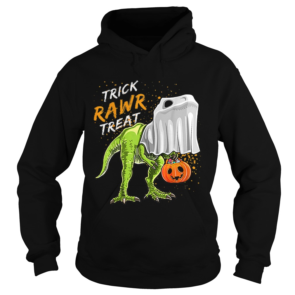 Trick Rawr Treat Halloween T Rex Dinosaur Ghost Boys Hoodie