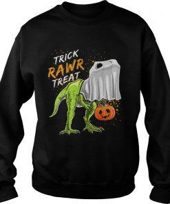 Trick Rawr Treat Halloween T Rex Dinosaur Ghost Boys  Sweatshirt