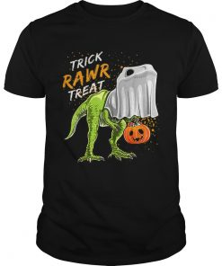 Trick Rawr Treat Halloween T Rex Dinosaur Ghost Boys  Unisex