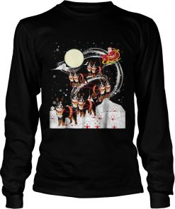 Nice Bernese Mountain Dog Reindeer Christmas 2018 Dog  LongSleeve