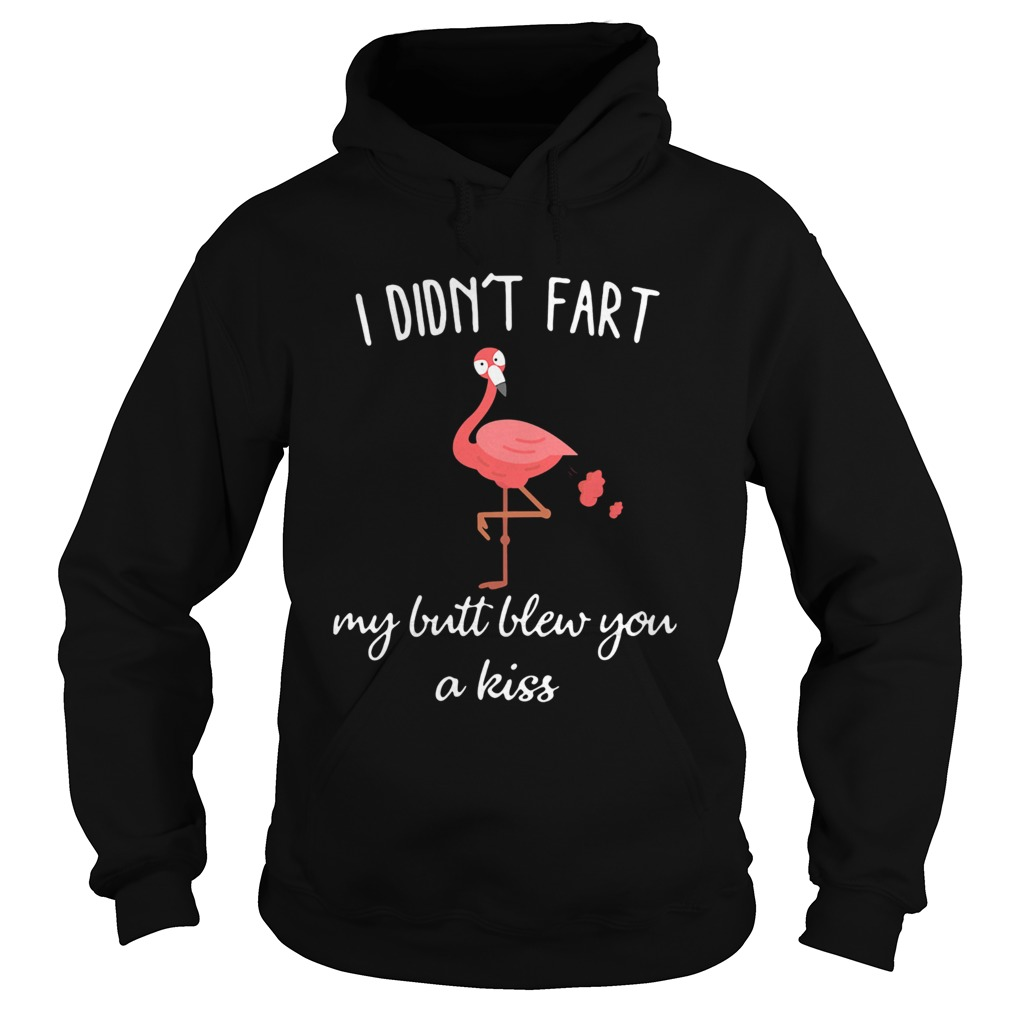 Flamingo i didnt fart my butt blew you a kiss Hoodie