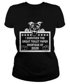 I Survived The Great Toilet Paper Shortage Of 2020  Classic Ladies