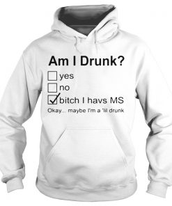 Nice Am I Drunk Yes No Bitch I Have MS Okay Maybe Im A Lil Drunk  Hoodie