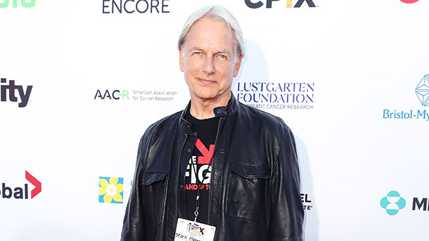 Mark Harmon's Sons Meet TheHandsome Kids Of The 'NCIS' Star